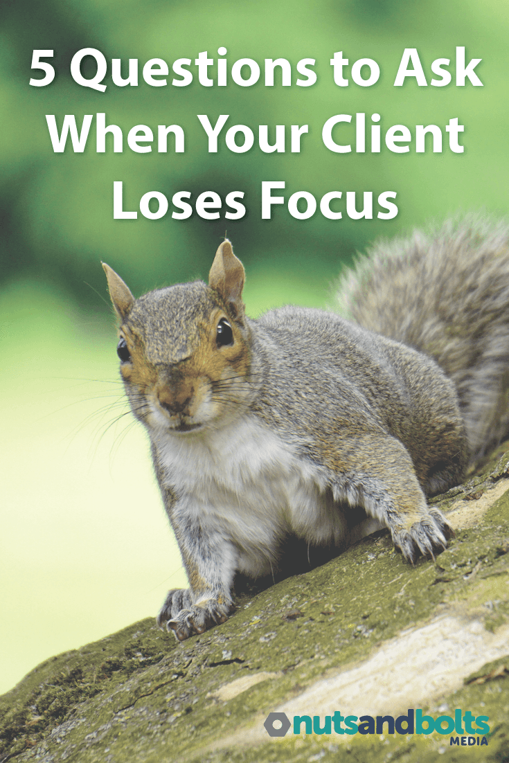 5 Questions to Ask When Your Client Loses Focus: It's a freelance designer or developer's job to keep projects on task even if the client gets distracted. Here are 5 questions to ask. via @awhitmer83